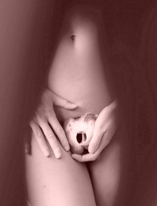 Supplements to reduce estrogen