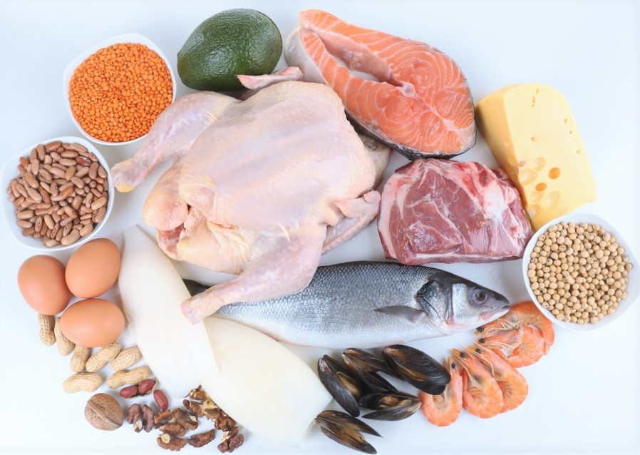 endometriosis diet and protein