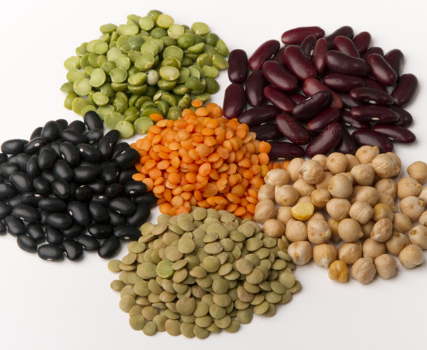 Phytoestrogens and the endometriosis diet