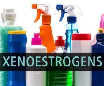 xenoestrogens and endometriosis