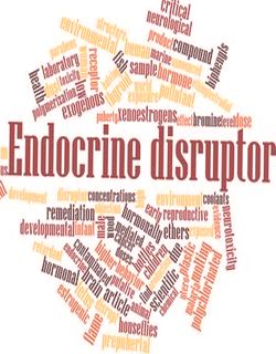 Endometriosis and endocrine disruptors
