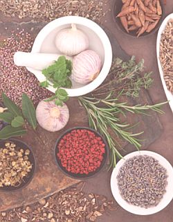 Herbal remedies for endometriosis