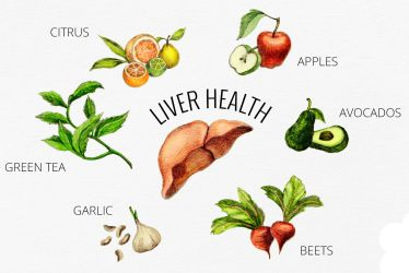 endometriosis and your liver health