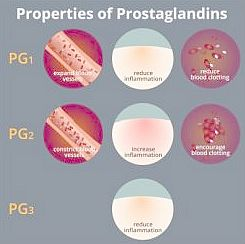 Prostaglandins and how they affect pain with endometriosis