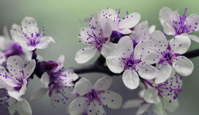 Free of endometriosis guest story