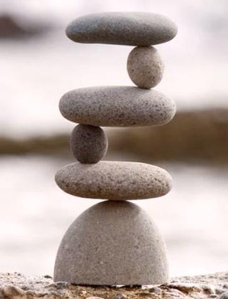 Balance estrogen phytoestrogens and xenoestrogens