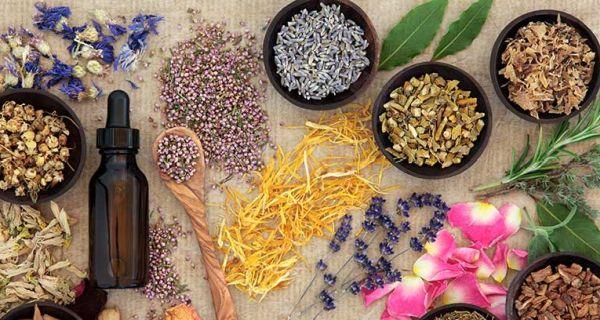 Success natural therapies for endometriosis