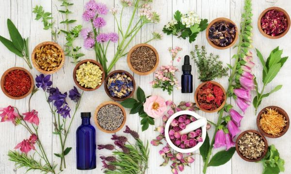 Natural remedies to support your body